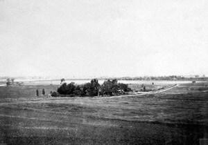 Ygnacio Valley in the early days