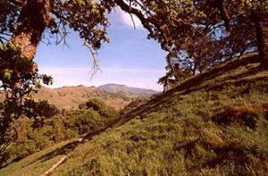 Kovar Trail, Shell Ridge Open Space