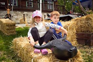 Centennial heritage day at Borges Ranch May 2014