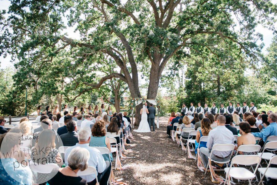 Wedding event at Shadelands Ranch in Walnut Creek, Ca